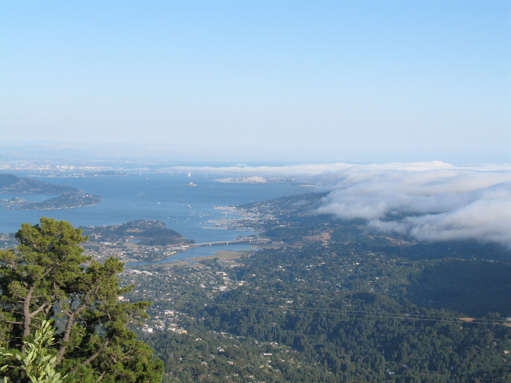 View of Marin County from Mt. Tamalpais. (Flickr: Steve Mohundro)