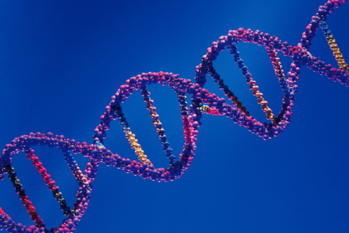 It's not the genes themselves, but mutations that can put women at higher risk of breast cancer.(Getty Images)