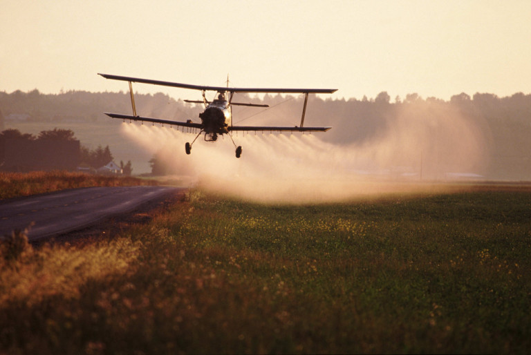 Study Finds Pesticide Exposure in Pregnancy Linked to Autism