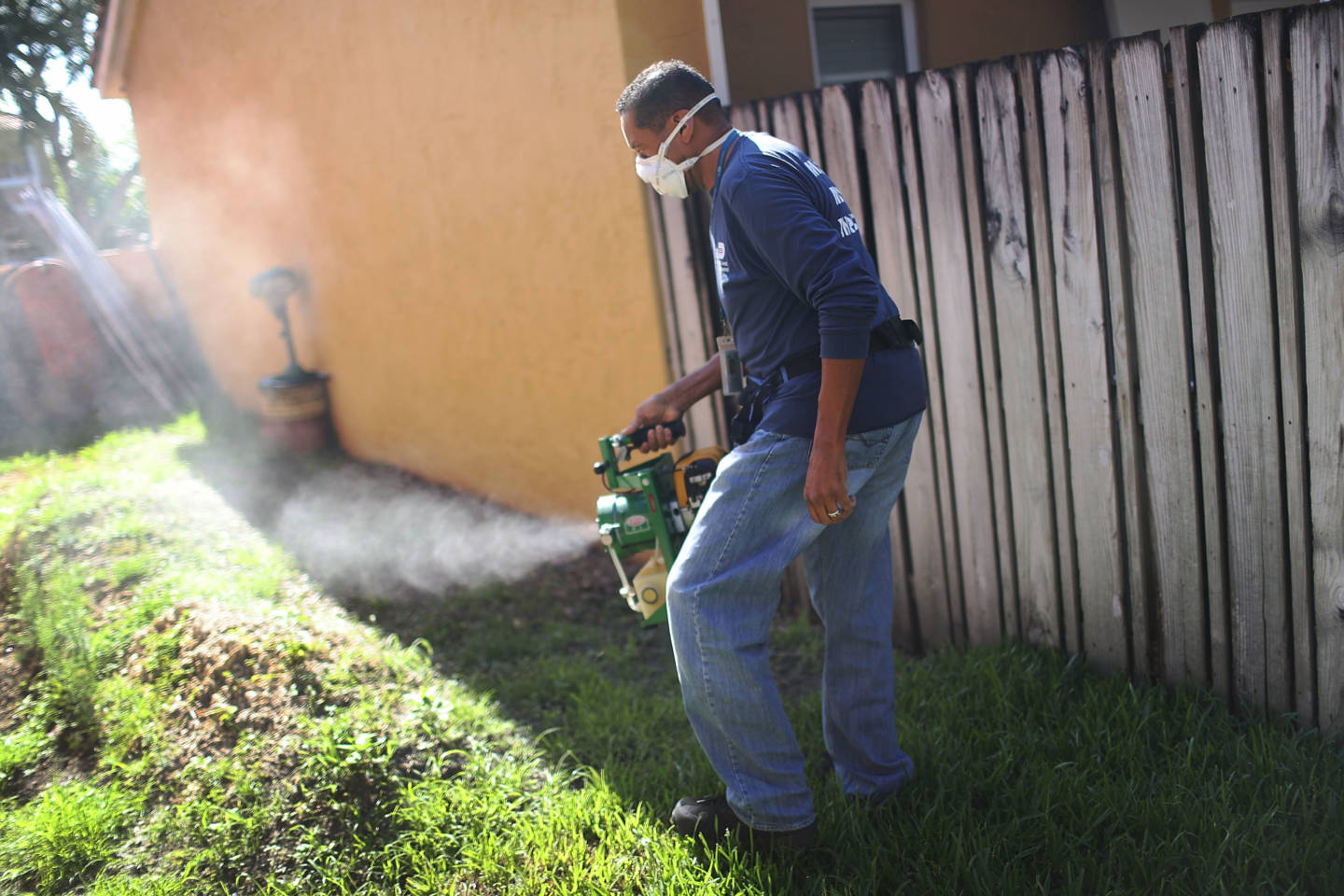 4 Zika Cases in Florida Are Likely From Mosquitoes