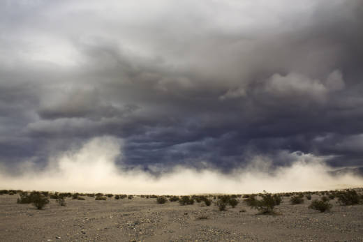 Climatologists and other researchers have theorized that intensified dust storms or heat waves linked to global warming can fuel Valley Fever infection.