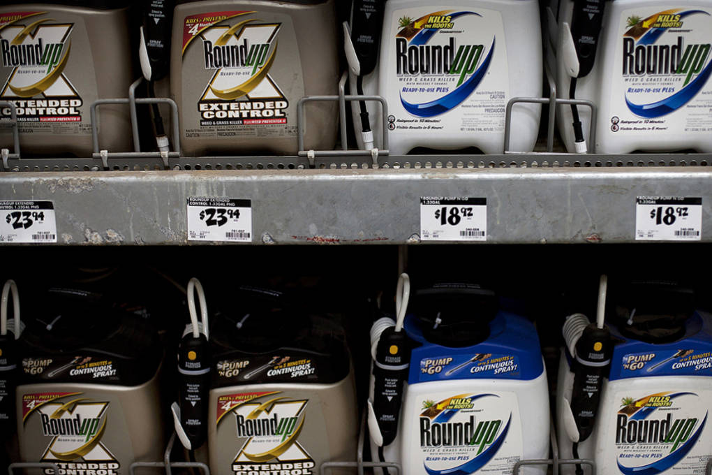California Cracks Down On Weed Killer As Lawsuits Abound
