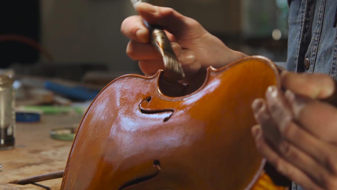 Con Moto: The Alexander String Quartet