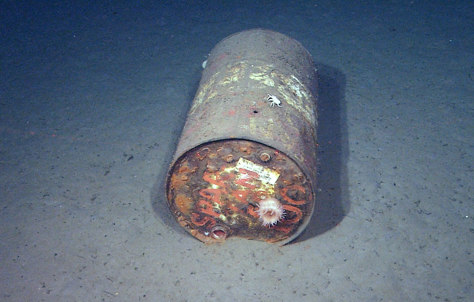This 55-gallon drum was observed on seafloor 9,488 feet deep in Monterey Canyon. (MBARI)