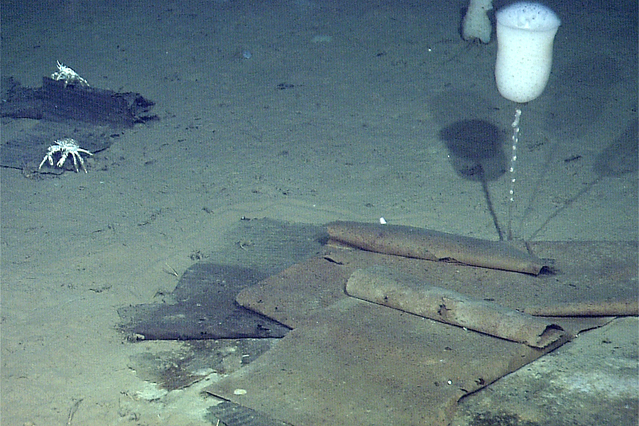 Pieces of cardboard on the seafloor, almost two and a half miles deep. (MBARI