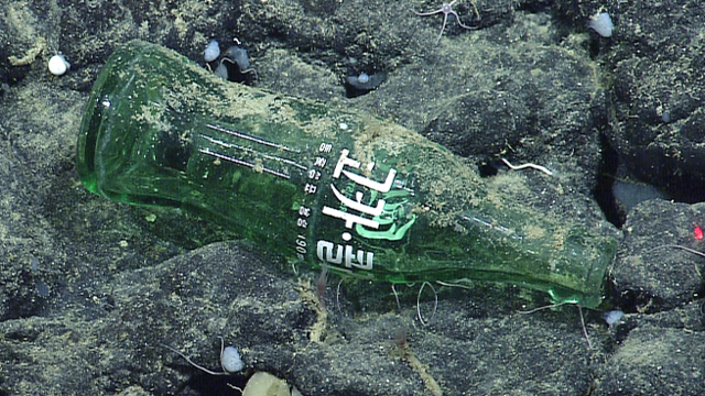 This Coke bottle with Asian lettering was observed at Davidson Seamount, 60 miles offshore and 5,666 feet below the ocean surface. (MBARI/NOAA)