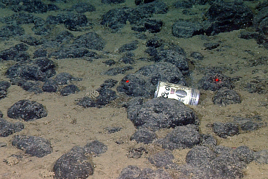 This beer can found its final resting place 8,445 feet underwater, off the coast of Central California. (MBARI)