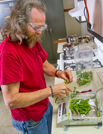 Woody Delp measures green beans in the test kitchen. (Photo: Lawrence Berkeley National Lab)