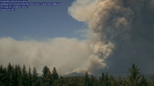 Smoke plume from the Rim Fire, as it intensified last week. Photo: USFS