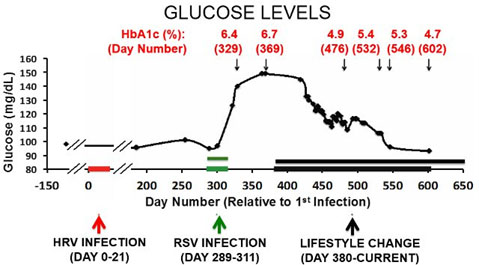 Virus-Induced Type 2 Diabetes