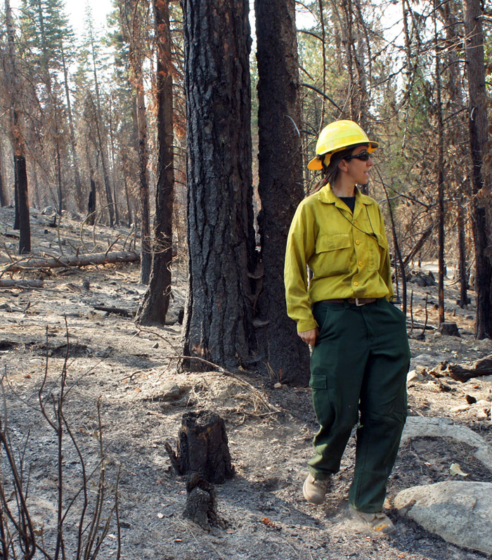 Forest Service ecologist Carol Ewell surveys the Rim Fire damage. (Photo: Lauren Sommer/KQED)