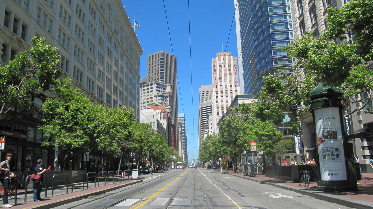 To a butterfly, Market Street in downtown San Francisco may look like a river canyon. (Molly Samuel/KQED)