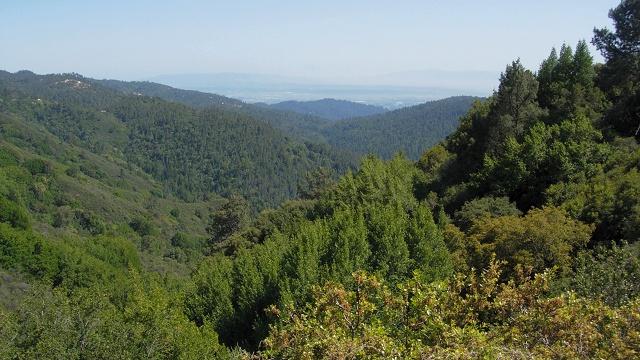 Loma Prieta epicentral region