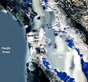 Map showing areas along the Bay that could be inundated by sea level rise