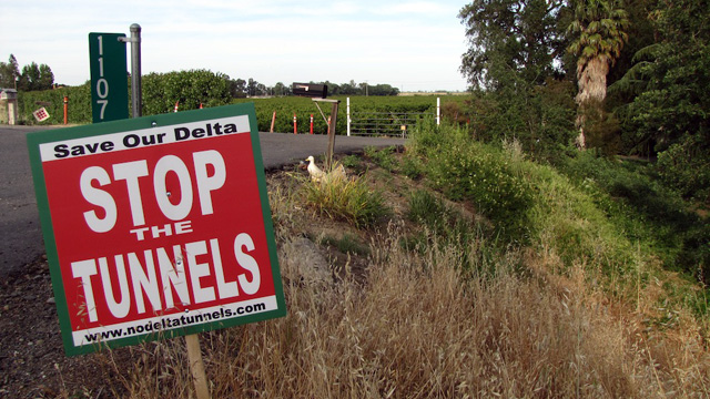Major hurdles remain for a $25 billion plan for the state's water supply, centered at Sacramento-San Joaquin Delta. (Craig Miller/KQED)