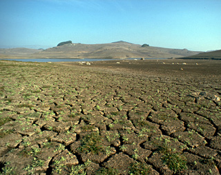 Cracked lake bed at Folsom Lake during the 1976-77 drought. (Photo: CA DWR)