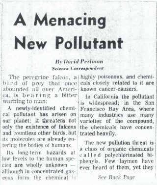 Perlman had already been covering science for a decade when he filed this 1969 piece about the newly-discovered family of toxic chemicals: PCBs. (San Francisco Chronicle)