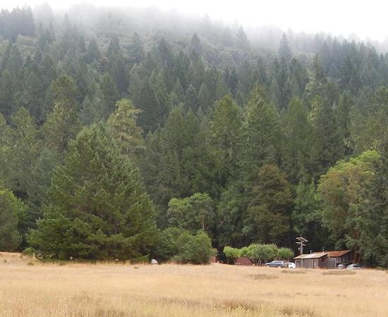 Angelo Reserve hills
