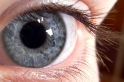 Why blue eyes spread across Northern Europe remains a mystery.  Image courtesy of Wikimedia Commons.