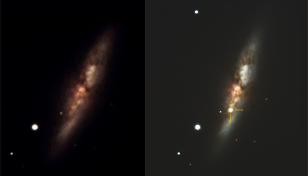 Supernova 2014J in the galaxy M-82, before (2004) and after (January 2014) pictures. Credit: Chabot Space & Science Center, Conrad Jung