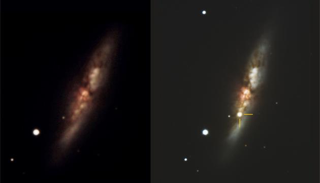 The Cigar Galaxy Lights Up: Supernova 2014J