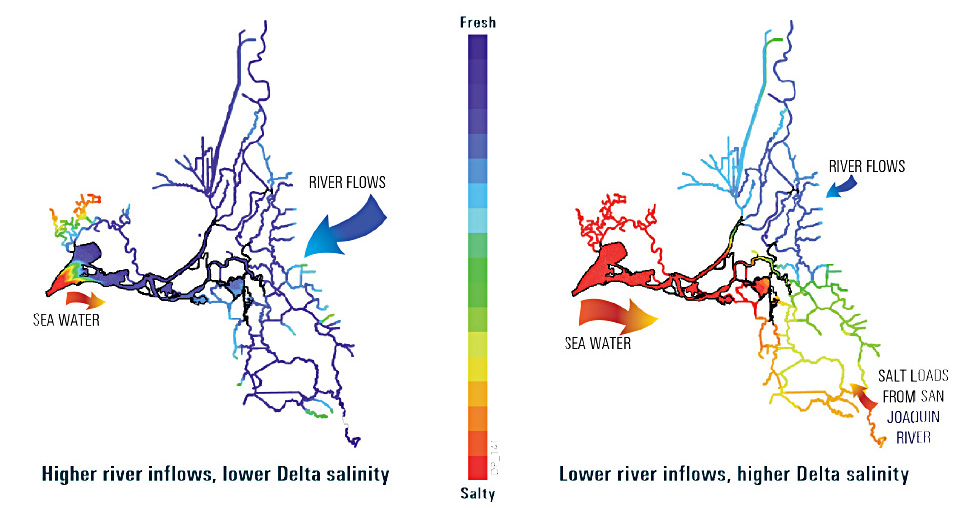 Seawater (in red) pushes into the Delta when the inflow from rivers is low. (Resource Management Associates, cited in Delta Plan)