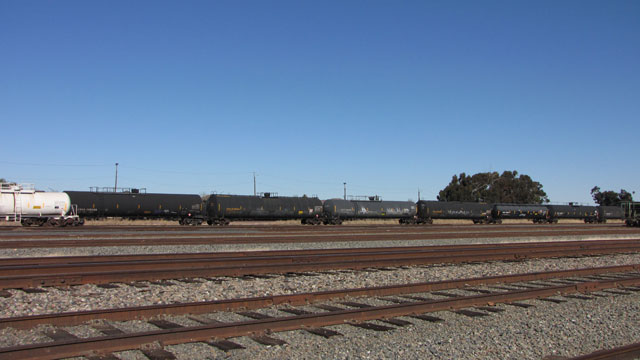 Tank cars on the tracks in Pittsburg. (Molly Samuel/KQED)
