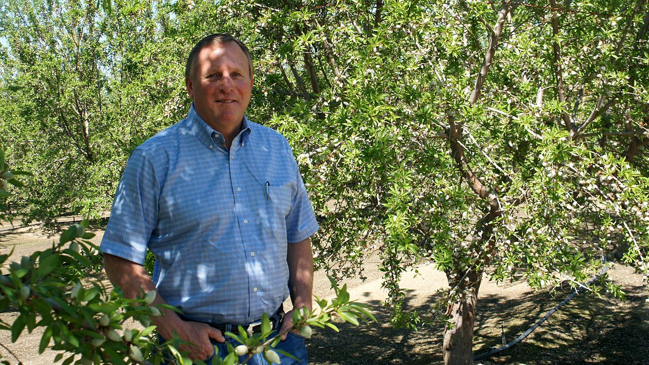 Farmer Keith Gardiner stands in his almond orchards near Wasco, California, just north of Bakersfield. (Lauren Sommer/KQED)