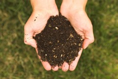 Compost added to rangeland in two experiments increased the soil's ability to absorb carbon as well as better retain water. (Kessner Photography/Wikimedia)