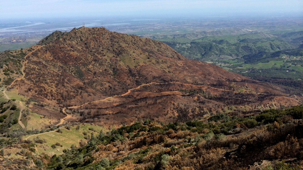 Hikers are helping document landscape recovery after the Morgan Fire. (Lauren Sommer/KQED)