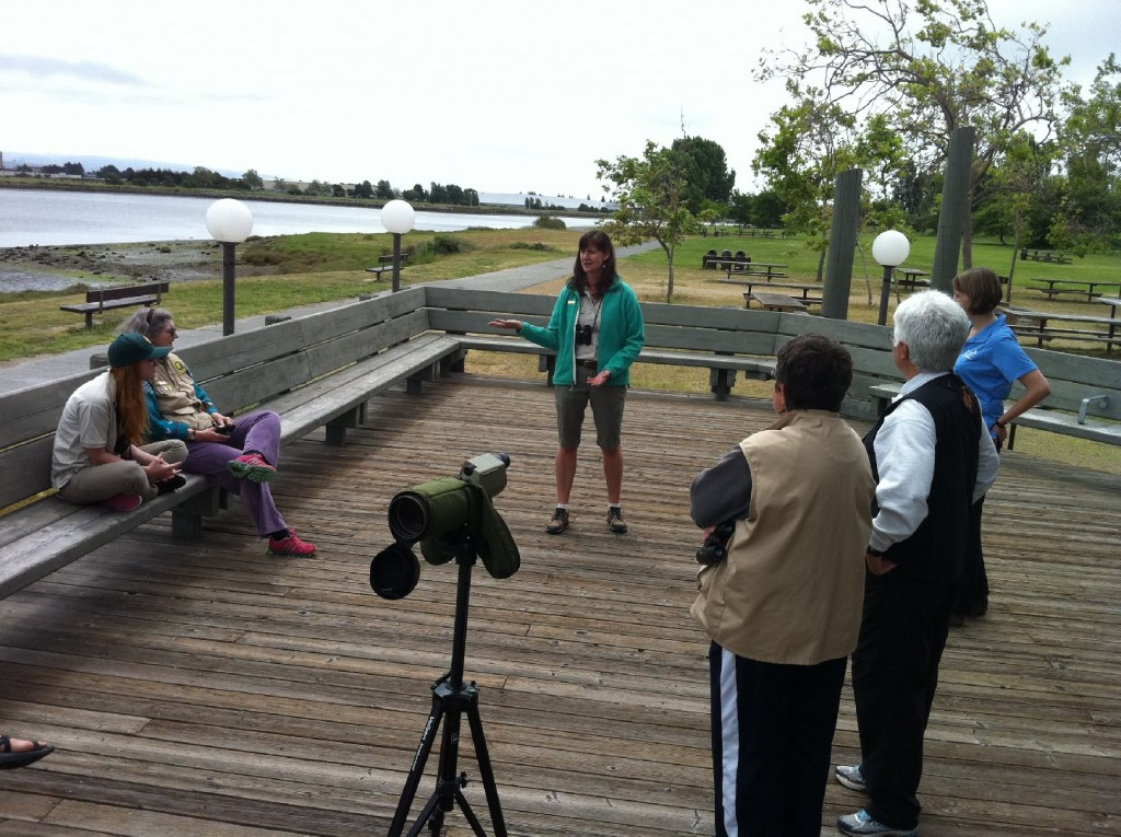 Birders gathered for a recent celebration of International Migratory Bird Week at MLK, Jr. Regional Shoreline.