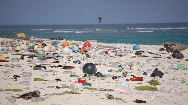 Plastic on Laysan Island