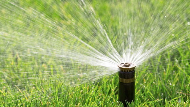 Spinkler watering a lawn. (iStock)