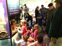 Families get a close look at bay creatures in Crab Cove's aquariums and learn about their habits and habitats during the fish feeding program.