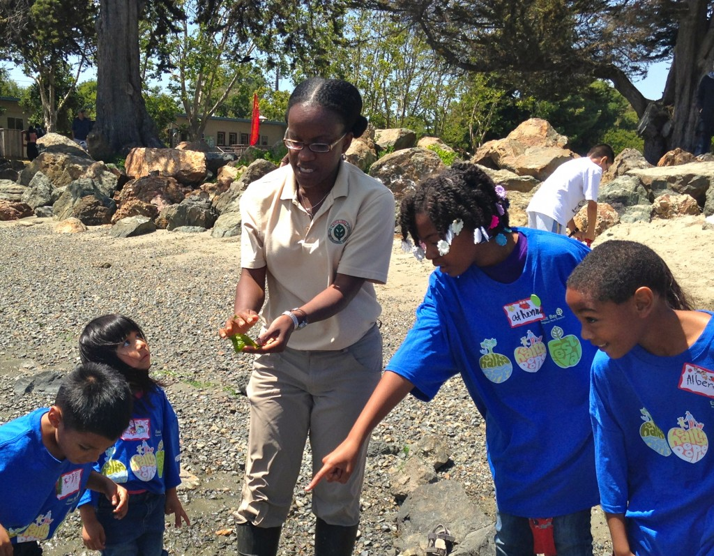 Yogi Francis, an Interpretive Student Aide, leads kids and their families on a low-tide walk at Crab Cove, EBRPD.