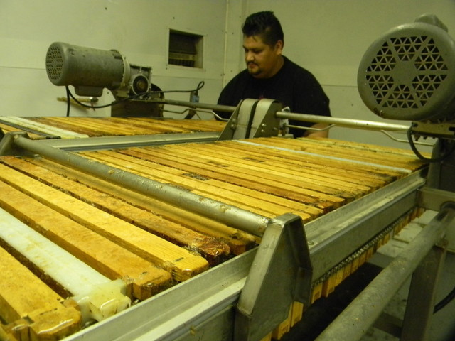 Shop foreman Manuel Salas removes the wooden frames after honey is extracted from the honey combs. He works for Godlin Bees east of Visalia. (Alice Daniel/KQED)