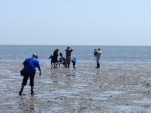 Exploring in the mudflats at low tide is a multi-sensory experience.