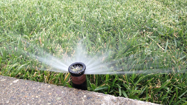 Water agencies say they're cracking down on outside watering -- but enforcement is murky. (Craig Miller)