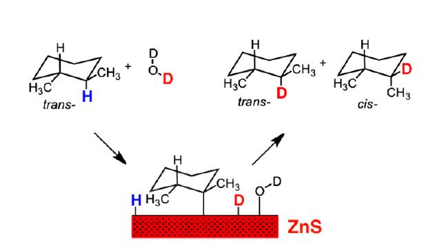 Sphalerite catalysis