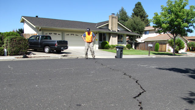 Seismologist David Schwartz examines a crack in suburban Napa that he says shows a few centimeters of side-slip -- a clue to faulting below. (Craig Miller/KQED)
