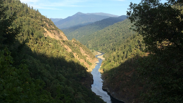 Why More Trees in the Sierra Mean Less Water for California
