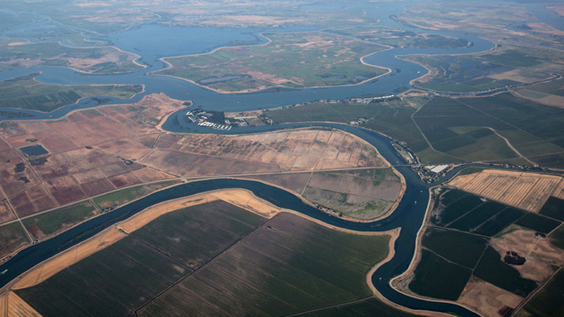 The Sacramento-San Joaquin Delta has been almost completely transformed over the past 150 years. (Mark Andrew Boyer/KQED)