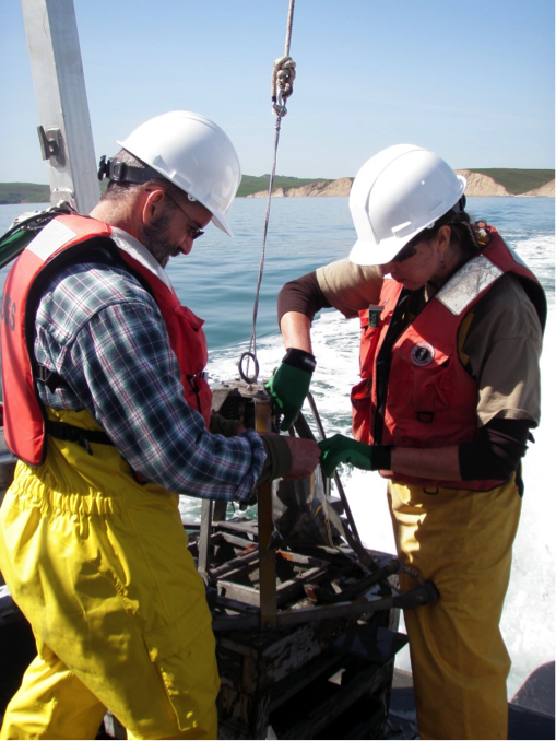 Daniel Hoover and Brenda Goeden collect sand samples along the coast of Drakes Bay in California. (Amy Foxgrover/USGS)
