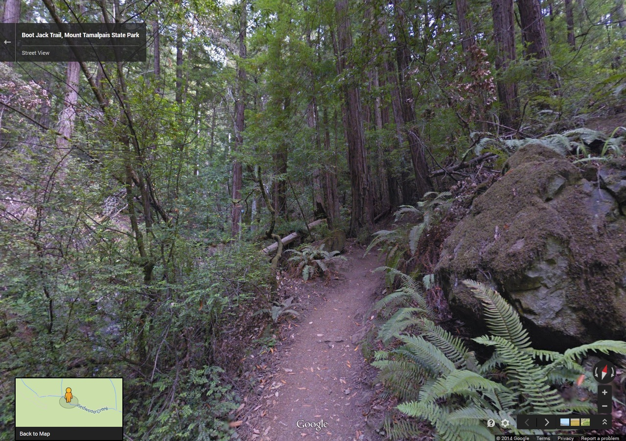 The Boot Jack Trail on Mount Tam. (Google Maps)