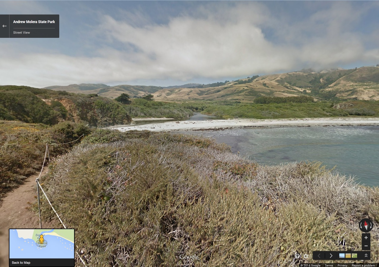 Andrew Molera State Park in Big Sur. (Google Maps)