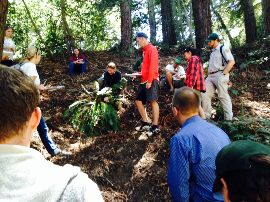 "East Bay Regional Parks naturalists practice measuring swordfern fronds for the ""Fern Watch"" Project."