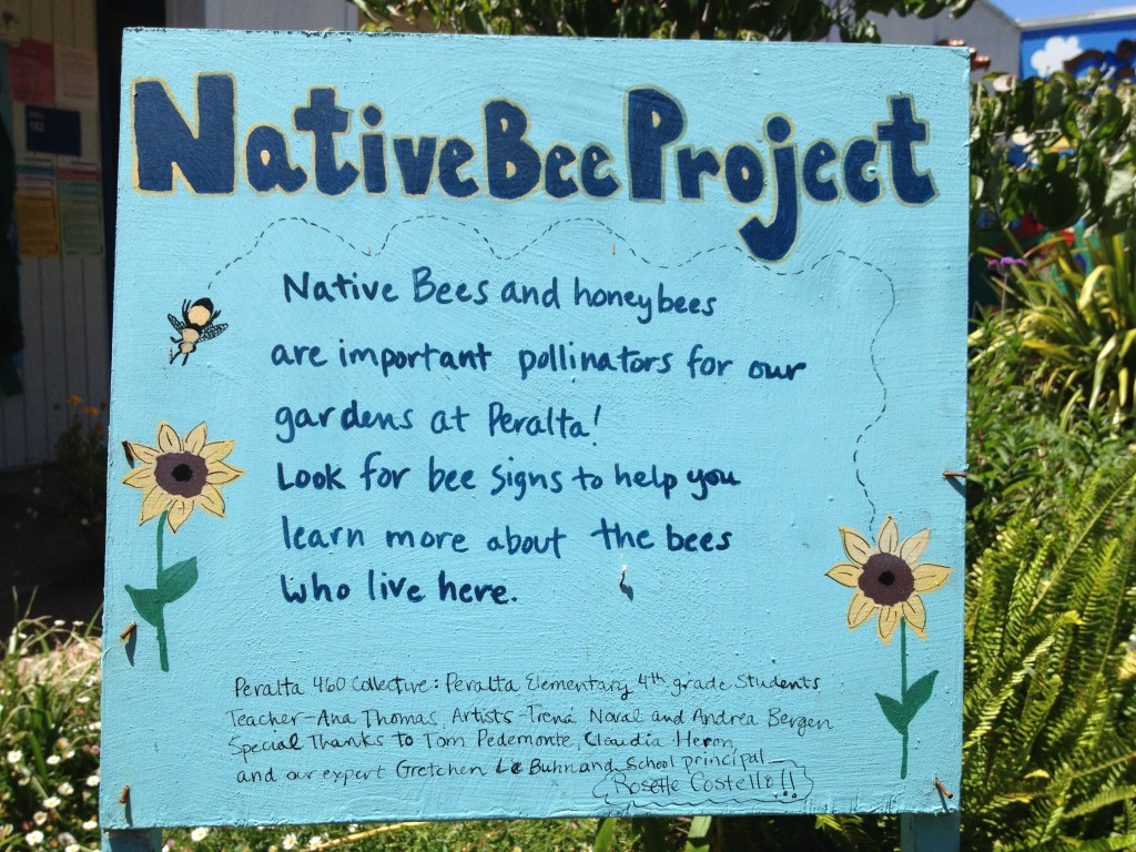 Everyone can help our bee populations, including school children. (Courtesy of Gretchen LeBuhn)