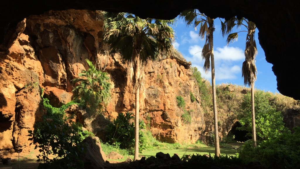 Makauwahi sinkhole, seen from the caves on the south side. (Craig Miller/KQED)