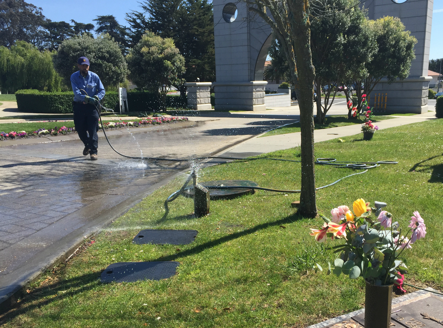 A worker sprays down part of Cypress Lawn Memorial Park in Colma. Officials hope to cut back water-use there, but not so much the grass goes brown. (Daniel Potter/KQED)