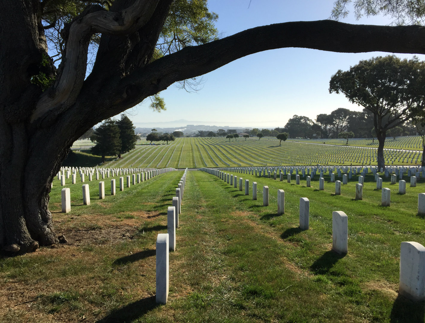 Tens of thousands of veterans, along with their spouses and children, are buried at Golden Gate National Cemetery in San Bruno. Veterans Administration officials say they get phone calls and letters if a site doesn't look cared for. (Daniel Potter/KQED)
